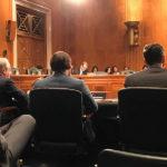 David Steiner testifies before U.S. Senate