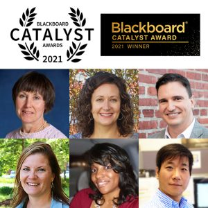 IDEALS Blackboard Catalyst Award recipients